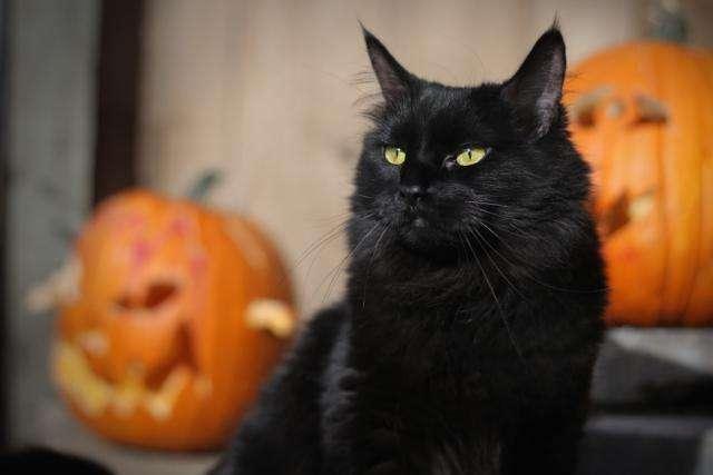 Τι είναι το Halloween και πού γιορτάζεται