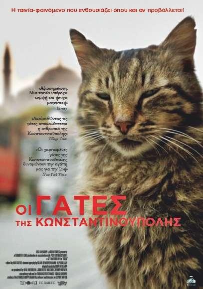 7df2ef2fef80 ... ένας παράδεισος για τις γάτες. Οι «δικοί του άνθρωποι» είναι πολλοί
