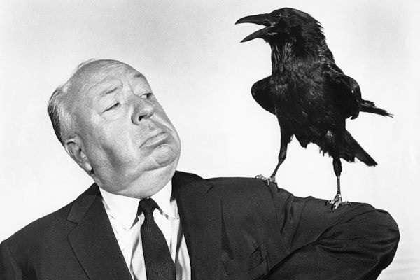 γιαπωνέζα com μεγάλο πουλί μεγάλο πέος χώρα