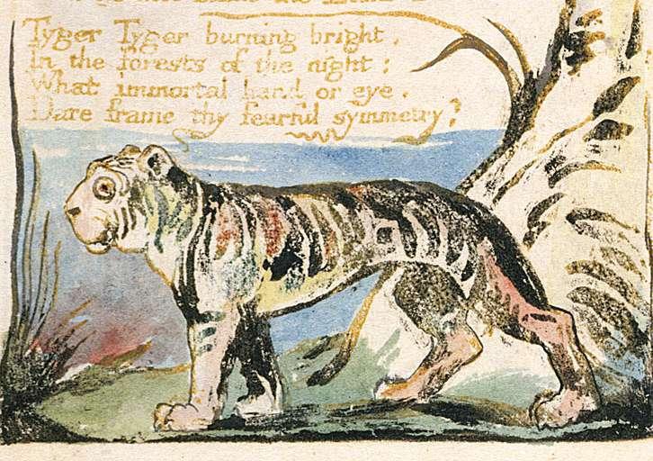 «Η Τίγρη» του William Blake