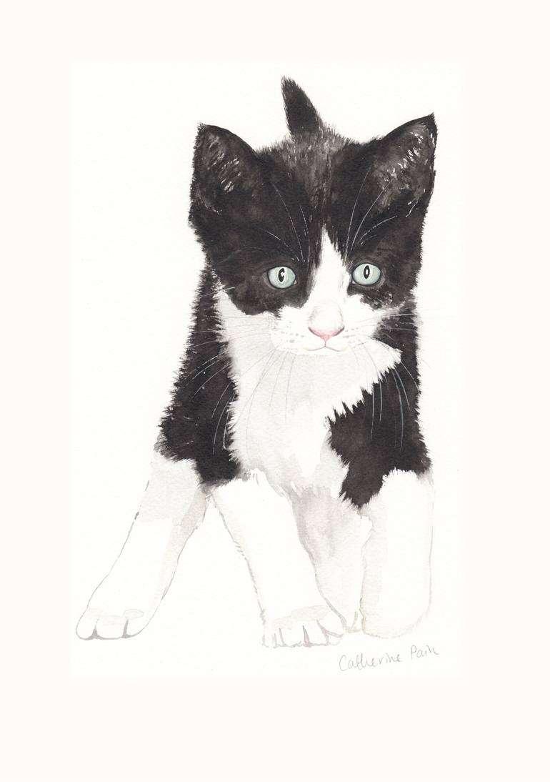 Το μικρό ασπρόμαυρο γατάκι και η ιστορία του / Της Μαρίας Σκαμπαρδώνη