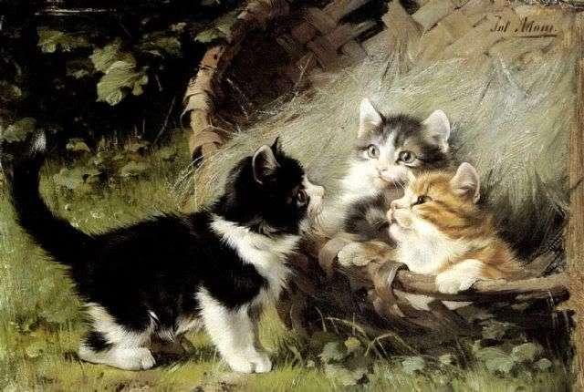 Αποδείξεις αγάπης από τη γάτα σας