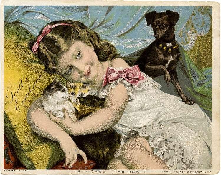 Μύθοι και αλήθειες για τη στείρωση των μικρών ζώων