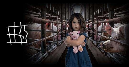 """Εκστρατεία """"Τέλος στα κλουβιά"""" – Όταν η εκτροφή ζώων γίνεται εφιάλτης"""