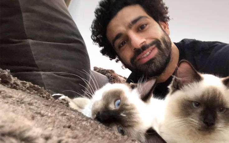 Κίνημα από τον Μοχάμεντ Σαλάχ για την προστασία γατών και σκύλων της Αιγύπτου από την εξαγωγή