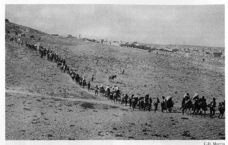 Πώς είδαν τη Γενοκτονία του Ποντιακού Ελληνισμού πριν 100 χρόνια οι Αμερικανοί και οι Ρώσοι επίσημοι