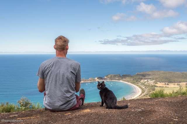 Ο Rich και η γάτα Willow ταξιδεύουν με το βαν τους σε ολόκληρη την Αυστραλία