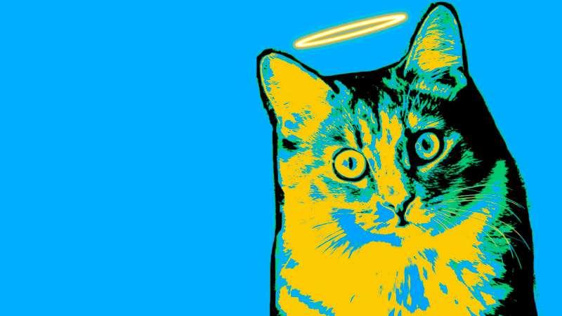 Η μικρή γάτα και το πείσμα της – Της Μαρίας Σκαμπαρδώνη