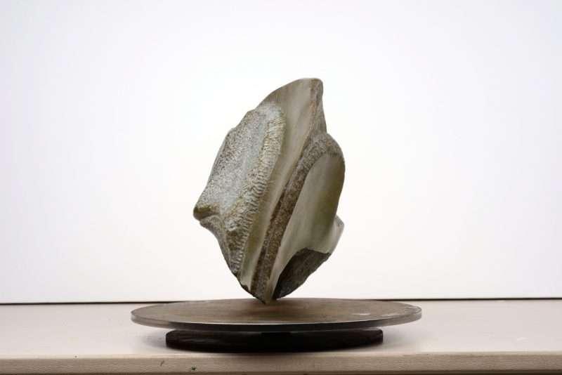"""Créations suggestives"": Έκθεση γλυπτικής του Daniel Verstraete στην Art Appel Gallery"