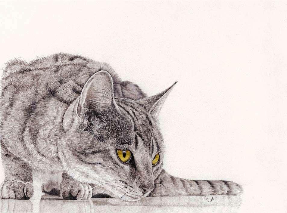 «Μια γάτα εφτάψυχη βυζαντινή» – Κώστας Βασιλείου
