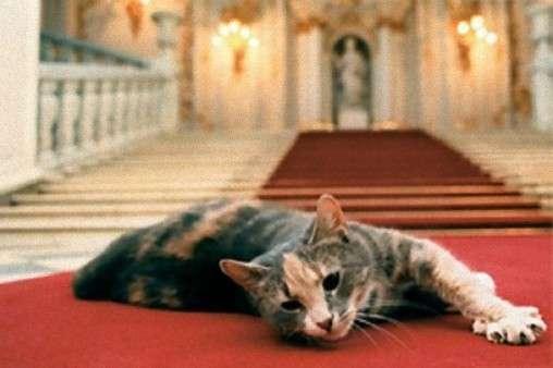 Οι γάτες – πνεύματα του Μουσείου Ερμιτάζ