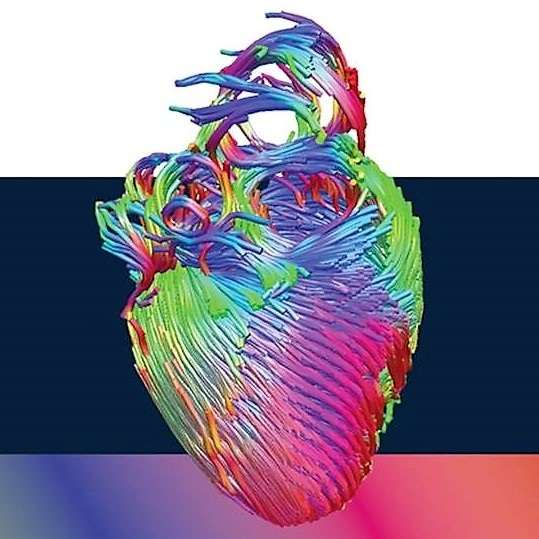 Ημερίδα Καρδιολογίας και Καρδιοχειρουργικής Συγγενών Καρδιοπαθειών Ενηλίκων στο ΜΗΤΕΡΑ