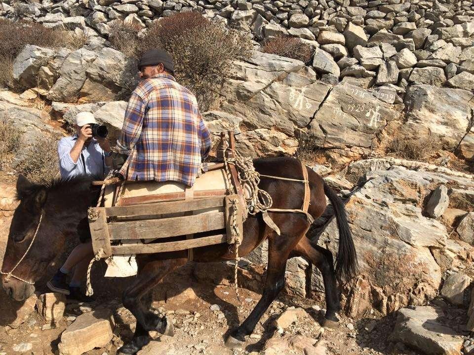 Ο γάιδαρος, ο αγρότης και ο τουρίστας